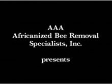 AAA Africanized Bee Removal Specialists, Inc.